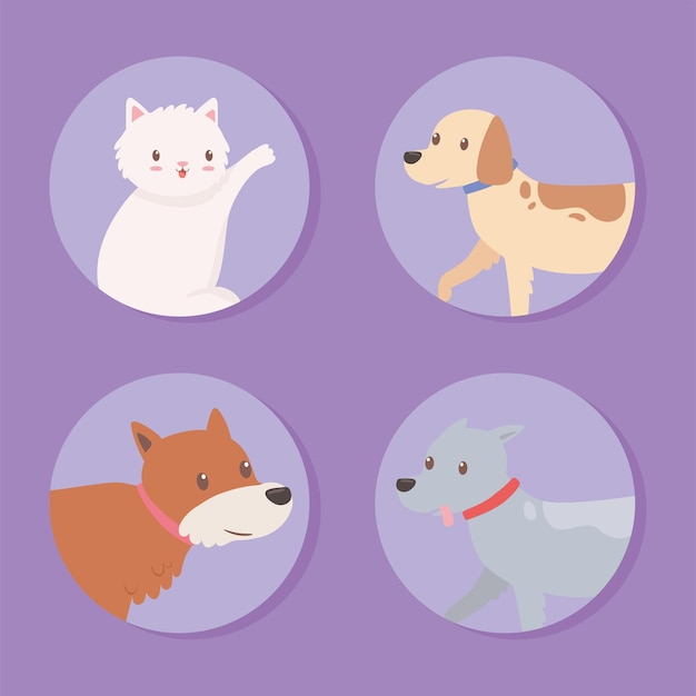 Setze icons haustiere tiere