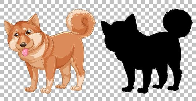 Shiba inu hund und seine silhouette