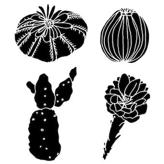 Silhouette eines kaktus auf weißem hintergrund. sammlung von logos. satz dekorative elemente.
