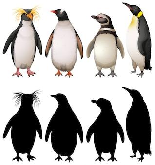 Silhouette, farbe und umrissversion der pinguine