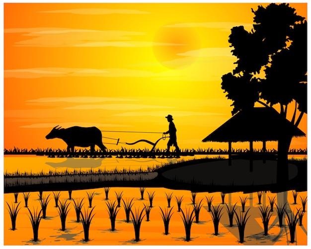 Silhouette landwirt pflug im reisfeld