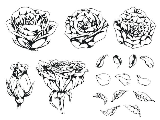 Silhouette rose handgezeichnete blume blumen monochrom