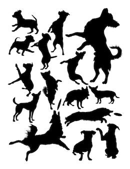 Silhouette von hunden
