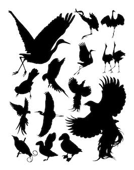 Silhouette von vögeln