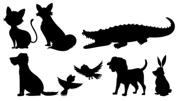 Silhouette von wilden tieren