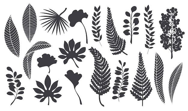 Silhouetten tropische blätter. monochrome glyphe waldpalme ginkgo biloba, monstera, cheflera, zamioculcas, farn hawaiianische blätter. pflanzenelemente-vektor-illustration.