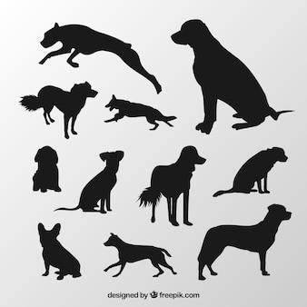 Silhouetten von hunderassen