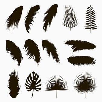 Silhouetten von tropischen und palmblättern set von isolierten exotischen pflanzenblättern des dschungels