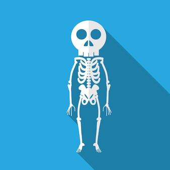 Skelett flache ikonenillustration lokalisiertes vektorzeichensymbol