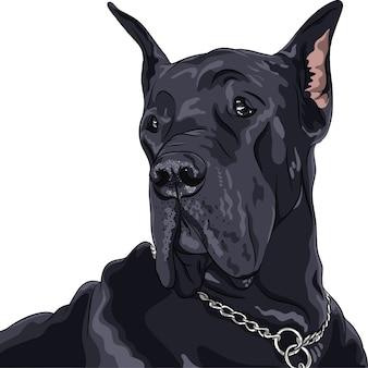 Skizze haushund schwarz deutsche dogge rasse