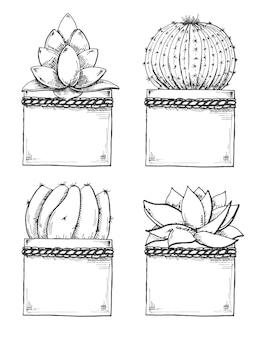 Skizze von sukkulenten in töpfen auf weiß isoliert