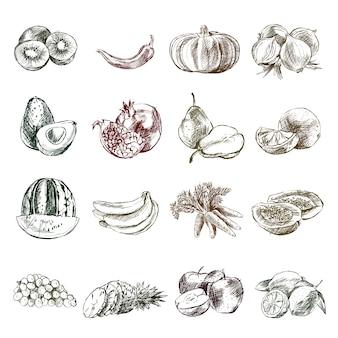 Skizzen von früchten