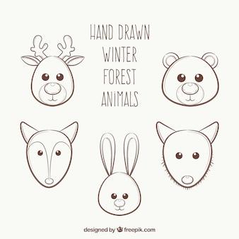Skizzen von schönen tiere