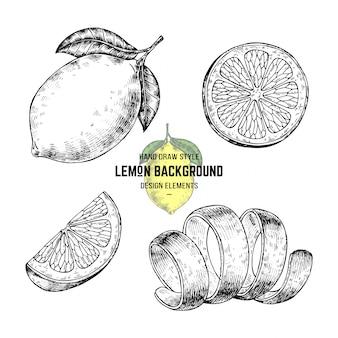 Skizzen von zitrone oder limette