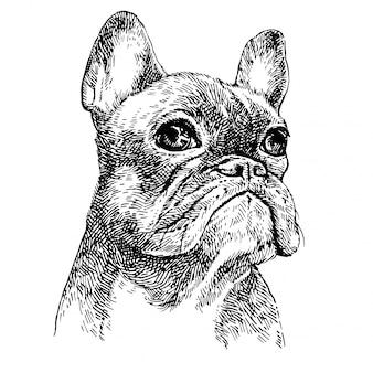Skizzenporträt eines niedlichen schwarzweiss-bulldoggenwelpen. hand gezeichneter hund