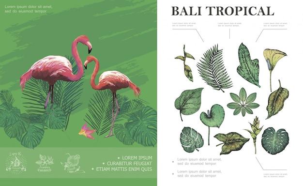 Skizzieren sie tropisches bali-konzept mit flamingos schönen palme banane monstera philodendron frangipani blätter und pflanzen