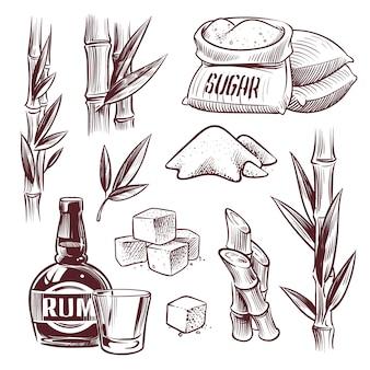 Skizzieren sie zuckerrohr. zuckerrohr süßes blatt, zuckerpflanzenstiele, rumgetränkeglas und flasche. hand gezeichnete zuckerherstellung