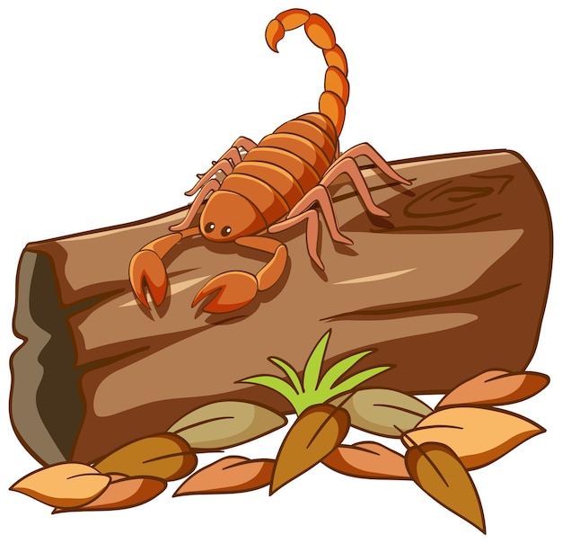 Skorpion auf verrottetem holz