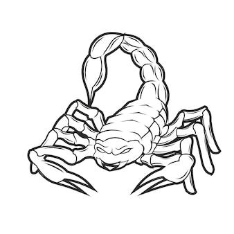 Skorpion handzeichnung vintage-stil