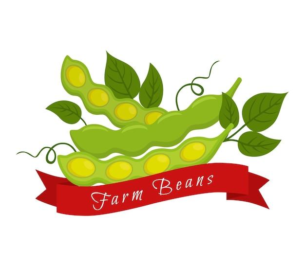 Soja bohnen label, logo. bauernhofprodukt, vegetarisches essen.