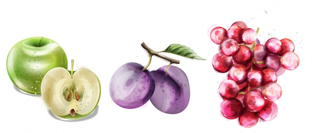 Sommer trägt vektoraquarell-mustersammlung früchte