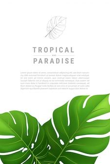 Sommer tropisch