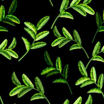 Sommer-tropische blätter - sommerblattrahmen, tropisches muster des dekorativen sommers