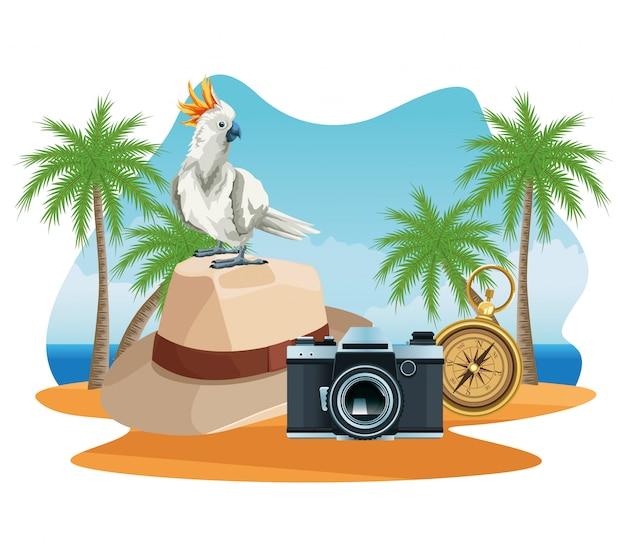 Sommerferien und strandcartoons.