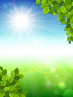 Sommerhintergrund mit grünen blättern