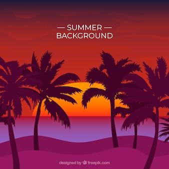 Sommerhintergrund mit palmeschattenbildern bei sonnenuntergang