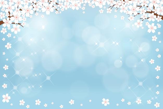 Sommernaturhintergrund mit netter weißer kirschblüte auf blauem pastellhintergrund