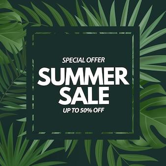 Sommerschlussverkauf. tropische palmblätter, exotische plumeria-blume.