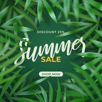 Sommerverkauf laub dschungel hintergrund rahmen illustration