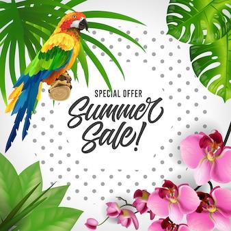 Sonderangebot sommerverkauf schriftzug. bunter tropischer hintergrund mit papageien und orchideen.