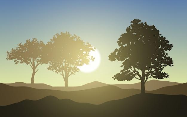 Sonnenaufgangslandschaft mit baumschattenbild