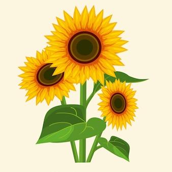 Sonnenblumen auf einem weißen