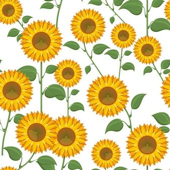 Sonnenblumen auf weißem hintergrund. sonnenblume mit grünen blättern nahtlose musterillustration