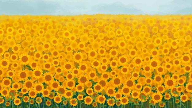 Sonnenblumengarten hintergrund