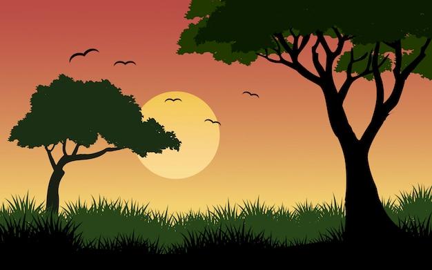 Sonnenuntergang in der savanne mit vögeln