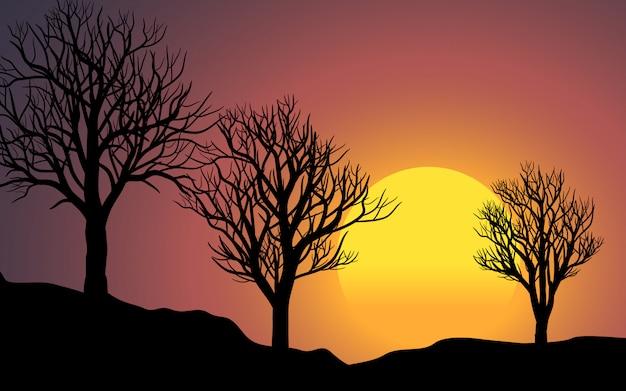 Sonnenunterganglandschaft mit drei toten bäumen