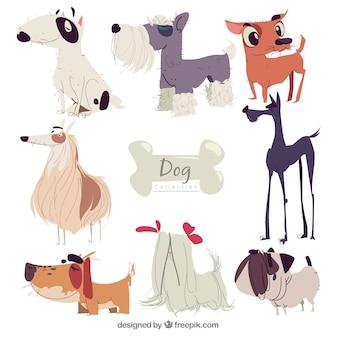 Sortiment von hunden mit verschiedenen rassen