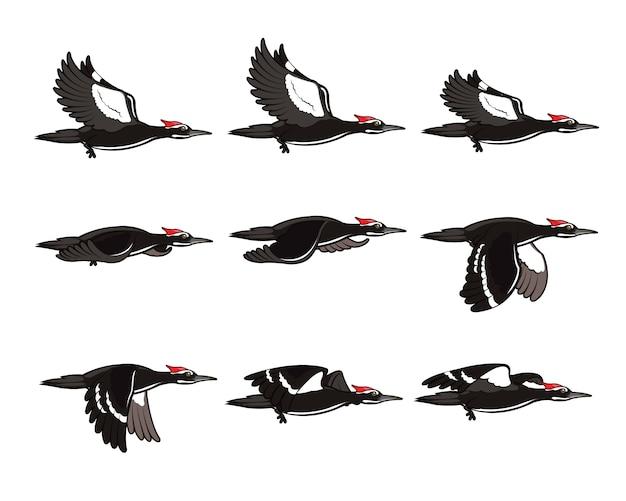 Specht-karikatur-fliegen-animation sprite