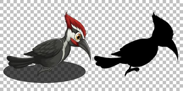 Spechtvogel-zeichentrickfigur mit seiner silhouette
