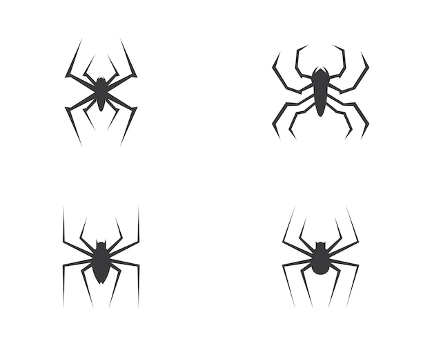 Spinne logo vektor
