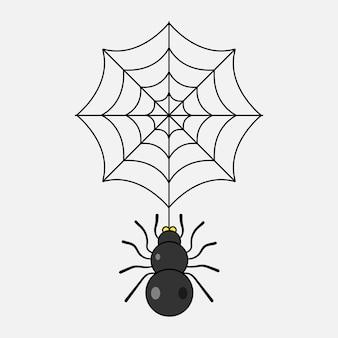 Spinne und netz