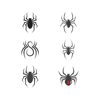 Spinnenikonendesignvektorillustrations-designschablone