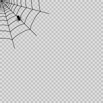Spinnennetz mit schwarzer spinne für halloween auf dem transparenten hintergrund. vektor.