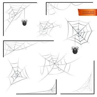 Spinnennetz monochrom