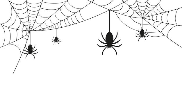 Spinnweben und spinnen hintergrund für halloween vektorgrafiken