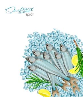 Sprotten-skizze-fisch-symbol isolierte meeres-atlantik-sprotten mit rosmarin und zitrone auf eiswürfeln